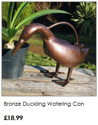 duck watering can